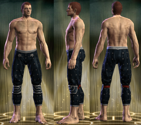 File:PvP R4 Cloth Seer Legs Male.png