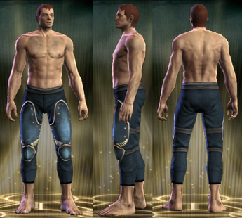 PvP R6 Plate Sentinel Legs Male