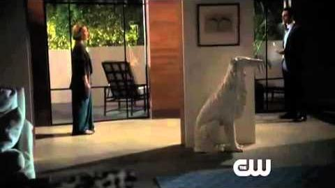 Ringer - Episode 4 'It's Going to Kill Me, But I'll Do It' Official Promo