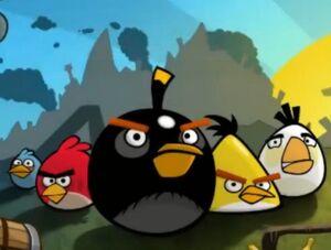 The Original Flock