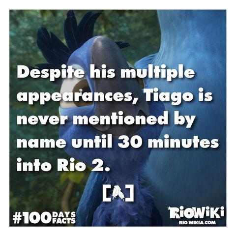 File:Rio-Wiki-100Days100Facts-082.jpg