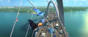 Juscelino Kubitschek Bridge, Brasilia in Rio 2