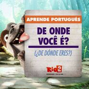 Rio 2 where are you from