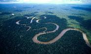Amazon river oxbow