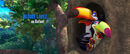 Rio (movie) wallpaper - Toucan Family
