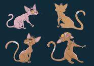 Pink Cat1