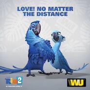 Love!No Matter The Distance