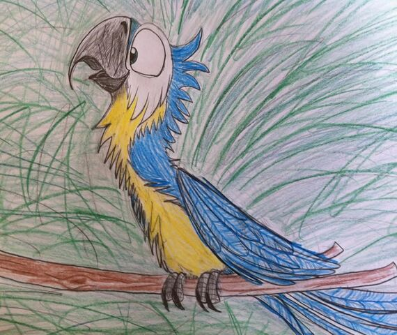 File:Blue and yellow macaw.jpg