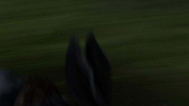File:Rise-guardians-disneyscreencaps com-734.jpg