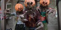 Return of the Pumpkinheads