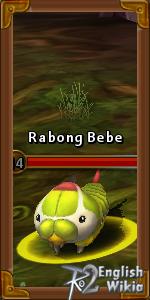 Rabong Bebe
