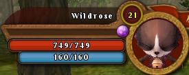 WildroseBar