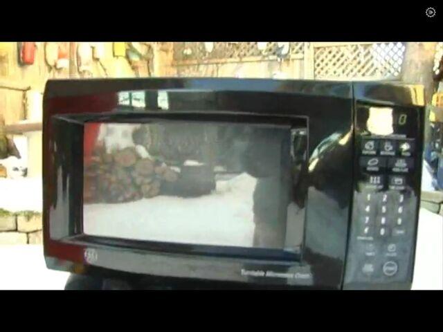 File:Jasmine(microwave).jpg