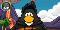 Agent Black Puffle