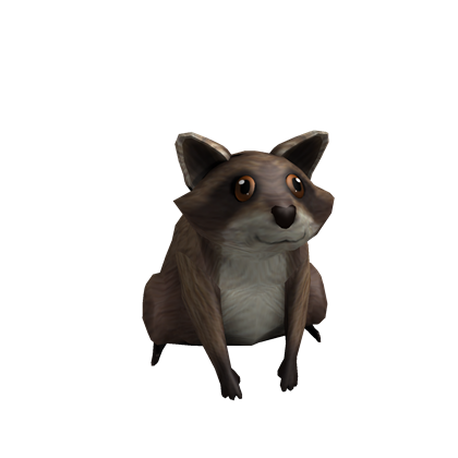 File:Friendly Raccoon.png