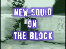 New-squid-on-the-block