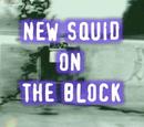 New Squid on the Block