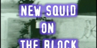 New Squid on the Block