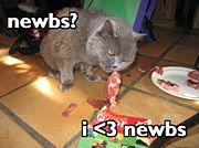 File:Image-Bite the newbs.jpg