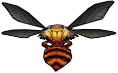 063 Lord Bee