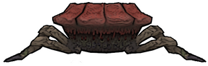 076 Rafflesia