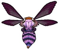180 Grand Bee