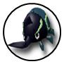 Rank d 02 hercules beetle