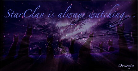 Purple starclan