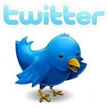 Twitter-logo-bird-s