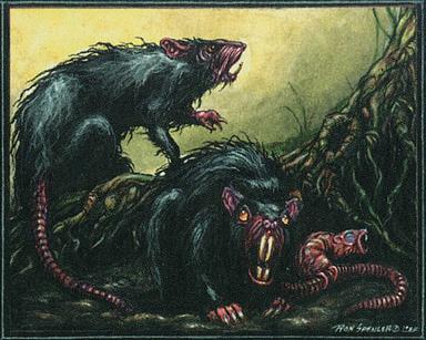 File:Bog-Rats.jpg