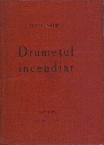 File:Gellu naum drumetul incendiar.JPG