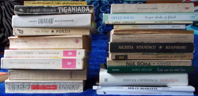 File:Literatura romana 2teancuri.jpg
