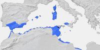Karthagisches Reich