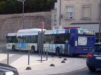 Bus vitalis (1)