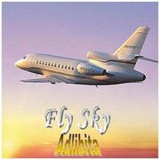 Fly Sky.jpg