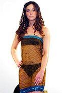 Kate-Middletons-Sheer-Dress
