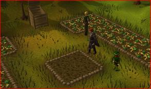 James farming