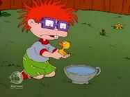 Rugrats - Chuckie's Duckling 141