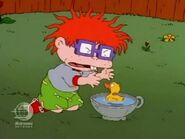 Rugrats - Chuckie's Duckling 143