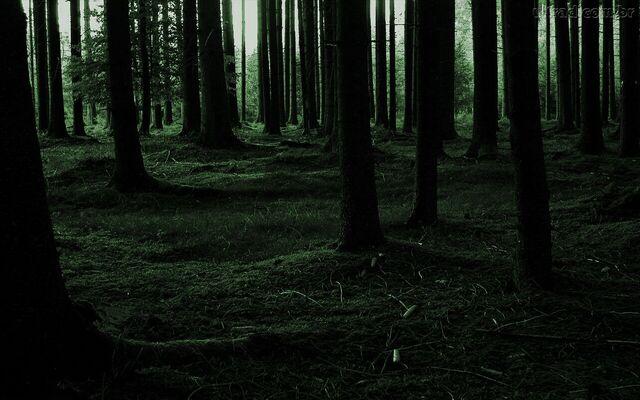 File:Blackwood.jpg