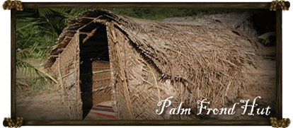 House - Palm Frond Hut
