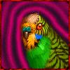 Npc - a crazed parakeet