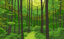 Theme Forest 03