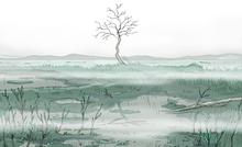 Theme Marshlands 02