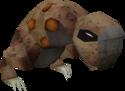 Wild kebbit detail