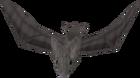 Bat old2