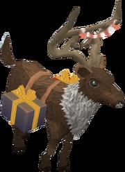 Friendly reindeer