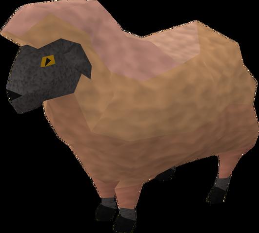 File:Sick looking sheep 1.png