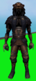 Lion outfit equipped (male).png