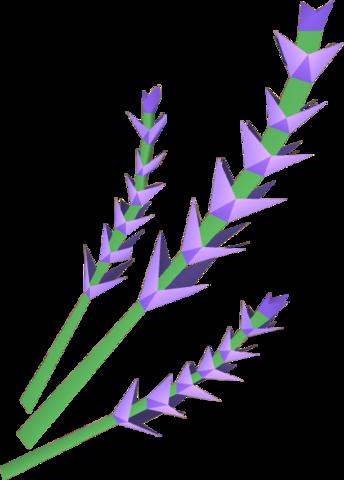 File:Lavender detail.png